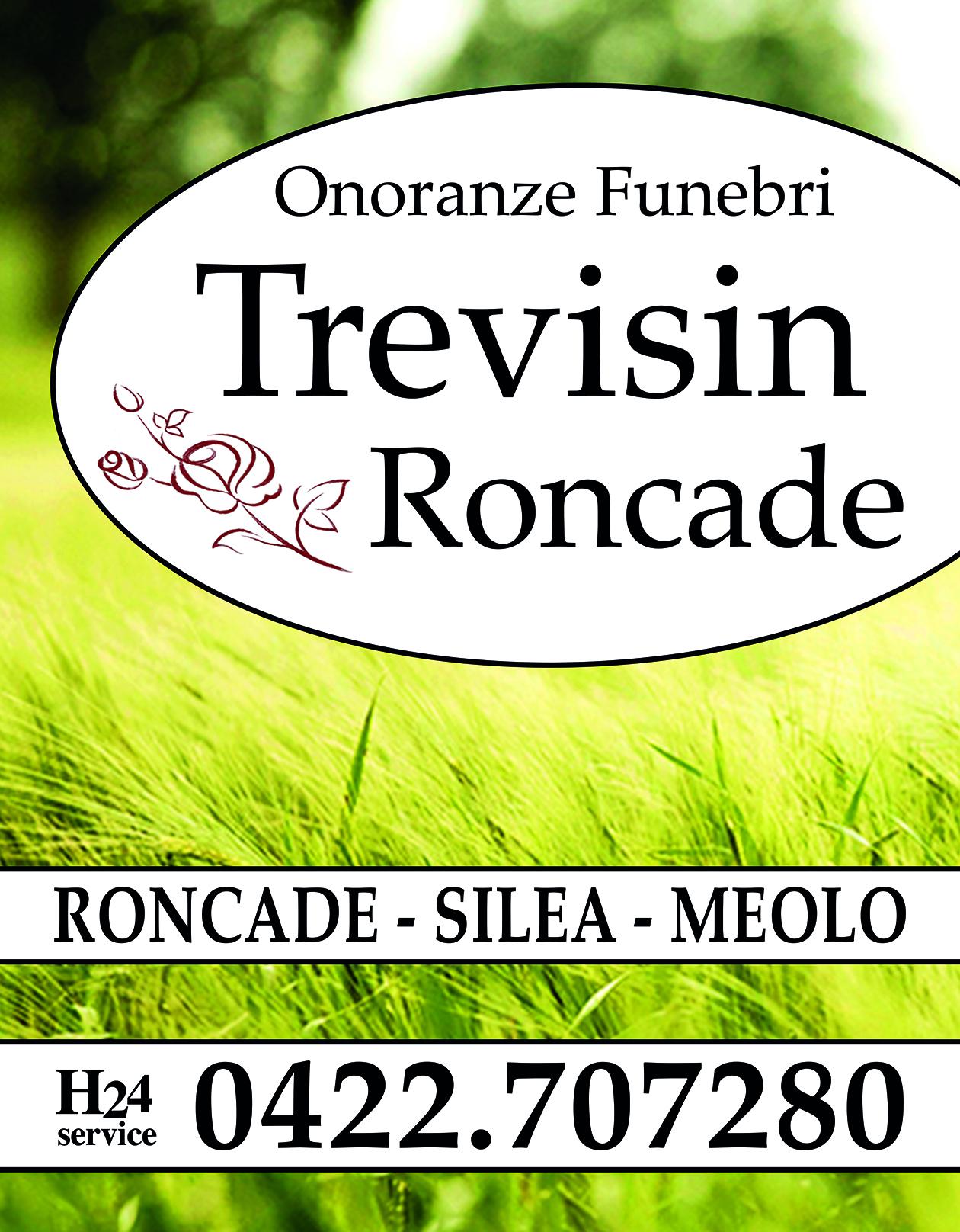 trevisin-banner.jpg